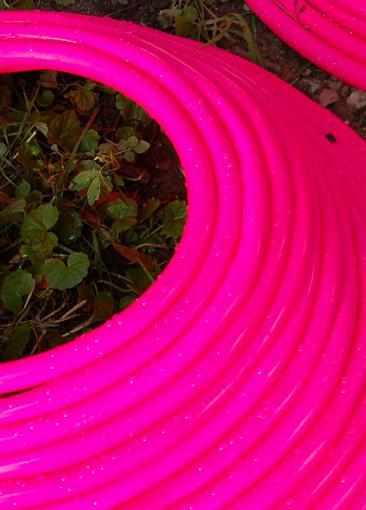 Neon waterhose