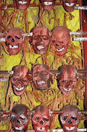 Skeleton Wall of Skulls