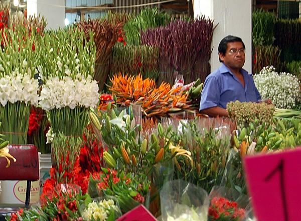 Mercado Jamaica 2