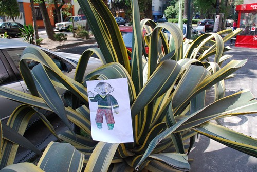 Flat Stanley Agave