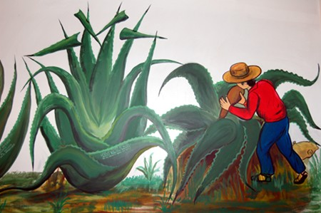 A mural showing how pulque is made, at a museum in Tlaxcala.