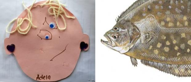 flounder-face